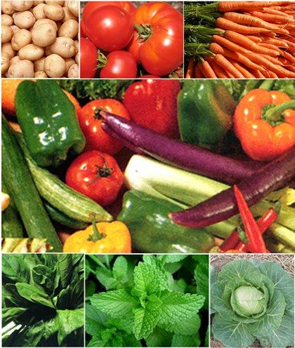 Post Harvesting Technology of Vegetables
