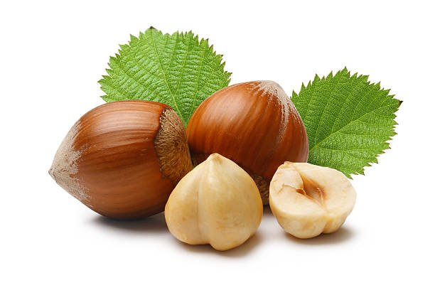 Hazelnut Farming, Cultivation, And Production Introduction