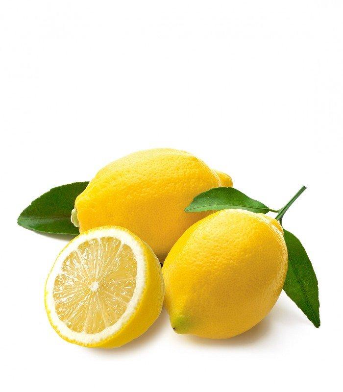 Organic Lemon Farming – Production Business Plan