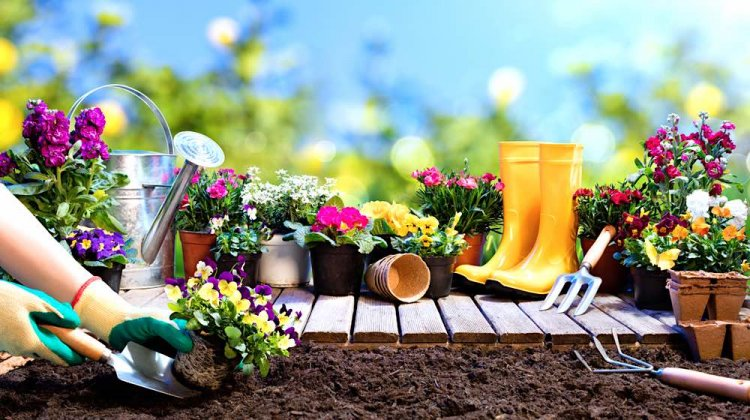 Flower Gardening For Beginners – Tips, and Ideas