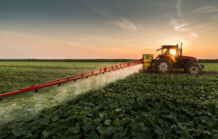 Role of Fungicides in Agriculture, and Horticulture